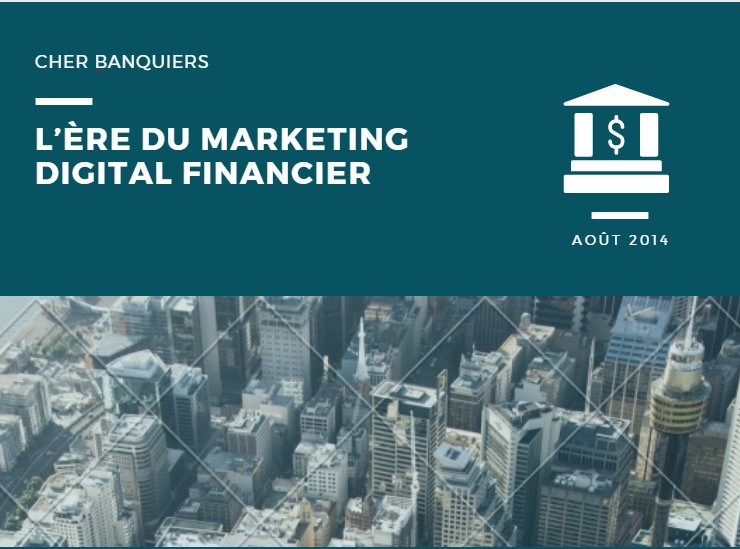 L'ère Du Marketing Digital Financier